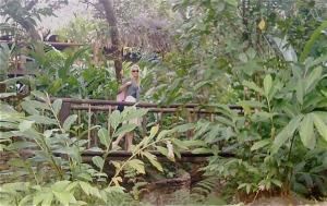 Tammy on Bridge in Beliz